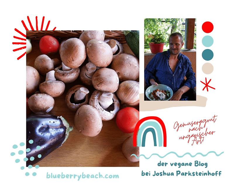 Joshua präsentiert ein weiteres veganes Rezept